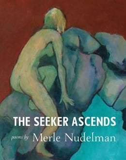 The Seeker Ascends Cover