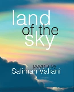 Land of the Sky cover