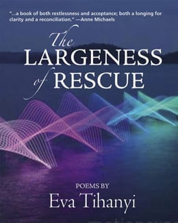 The Largeness of Rescue cover