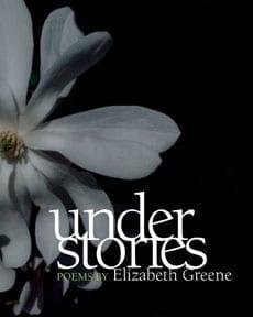understories cover