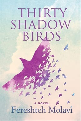 Thirty Shadow Birds