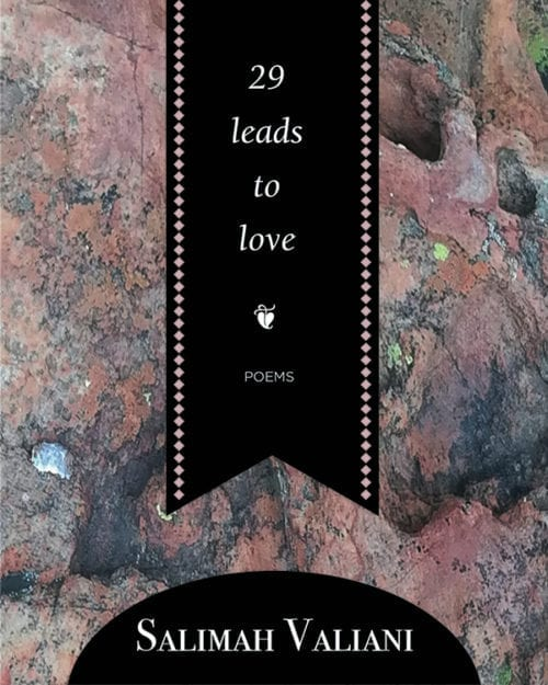 29 leads to love cover